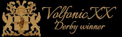 volfonic - derby winner - volbloed dekhengst